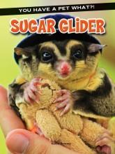 Sugar_Glider_COV.jpg